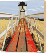 Path To The Lighthouse Wood Print