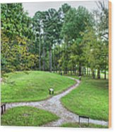 Path To The Mound Wood Print