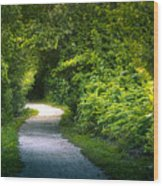 Path To The Secret Garden Wood Print
