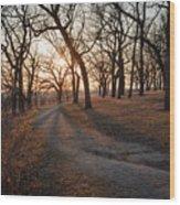 Path To The Sun Wood Print