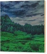 Path To Tipsoo Lake Wood Print