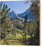 Path To Treasure Lakes Wood Print