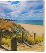 Path To Whiritoa Beach, Coromandel Wood Print