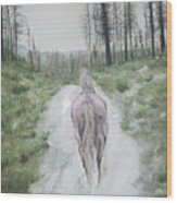 Path To Your Dreams Wood Print