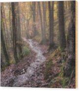 Path Trough The Woods Wood Print