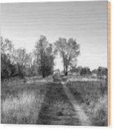 Path Yet Taken Wood Print