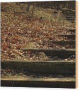 Paths Of The Seasons Wood Print