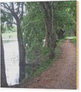 Pathway Wood Print