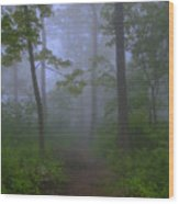 Pathway Through The Fog Wood Print