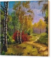 Pathway Through The Forest H B Wood Print