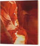 Pathway Through Upper Antelope Wood Print
