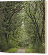 Pathway To Heaven Wood Print