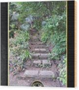 Pathways Wood Print
