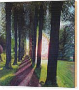 Pathy of light Wood Print
