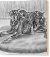 Patience - Doberman Pinscher And Puppy Print Wood Print by Kelli Swan