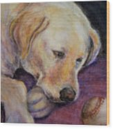 Patiently Waiting Wood Print by Susan Jenkins