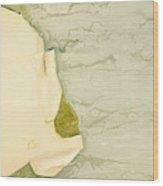 Patina 5 Wood Print