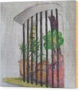 Patio Window - Gifted Wood Print