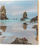 Patrick And Friends Visit Cannon Beach Wood Print