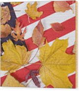 Patriotic Autumn Colors Wood Print