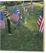 Patriotic Lawn Ornaments Represent Wood Print