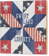 Patriotic Quilt 3 Wood Print