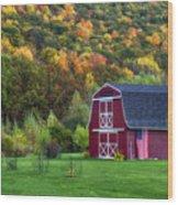Patriotic Red Barn Wood Print