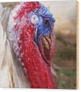 Patriotic Turkey Wood Print