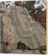 Pattern In A Gneiss Rock Wood Print