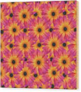 Pattern Of African Daisies Wood Print