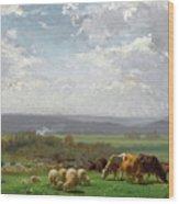Paturage En Auvergne Wood Print