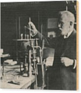 Paul Ehrlich, German Immunologist Wood Print by Photo Researchers