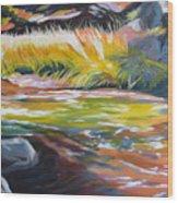 Paulina Creek Wood Print