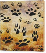 Paw Prints Wood Print by Andee Design