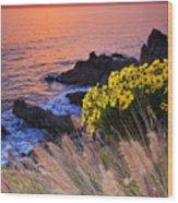 Pch Sunset Wood Print