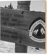 Pct Scenic Trail Wood Print
