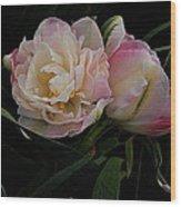 Pe0ny Tulip Duet 2 Wood Print