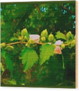 Peace And Serenity Wood Print