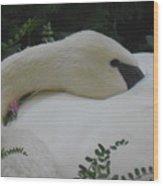 Peaceful Beauty Wood Print