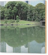 Peaceful Bridge In Tokyo Park Wood Print