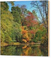 Peaceful Calm - Allaire State Park Wood Print