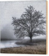 Peaceful Country Setting Wood Print