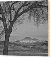Peaceful Early Morning Sunrise Longs Peak View Bw Wood Print