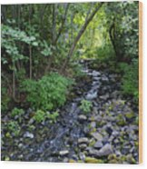 Peaceful Flowing Creek Wood Print