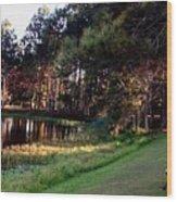 Peaceful Lakeside Park Scene H B Wood Print