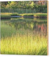 Peaceful Marsh Wood Print