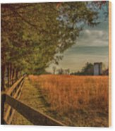 Peaceful On The Fam Wood Print