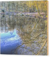 Peaceful Pond Reflections  Wood Print