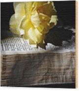 Peaceful Reading Wood Print