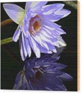 Peaceful Reflections Wood Print